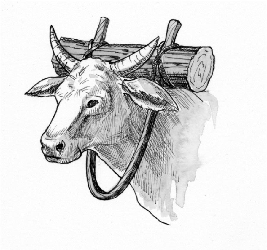 Lifted Yoke Home Logo
