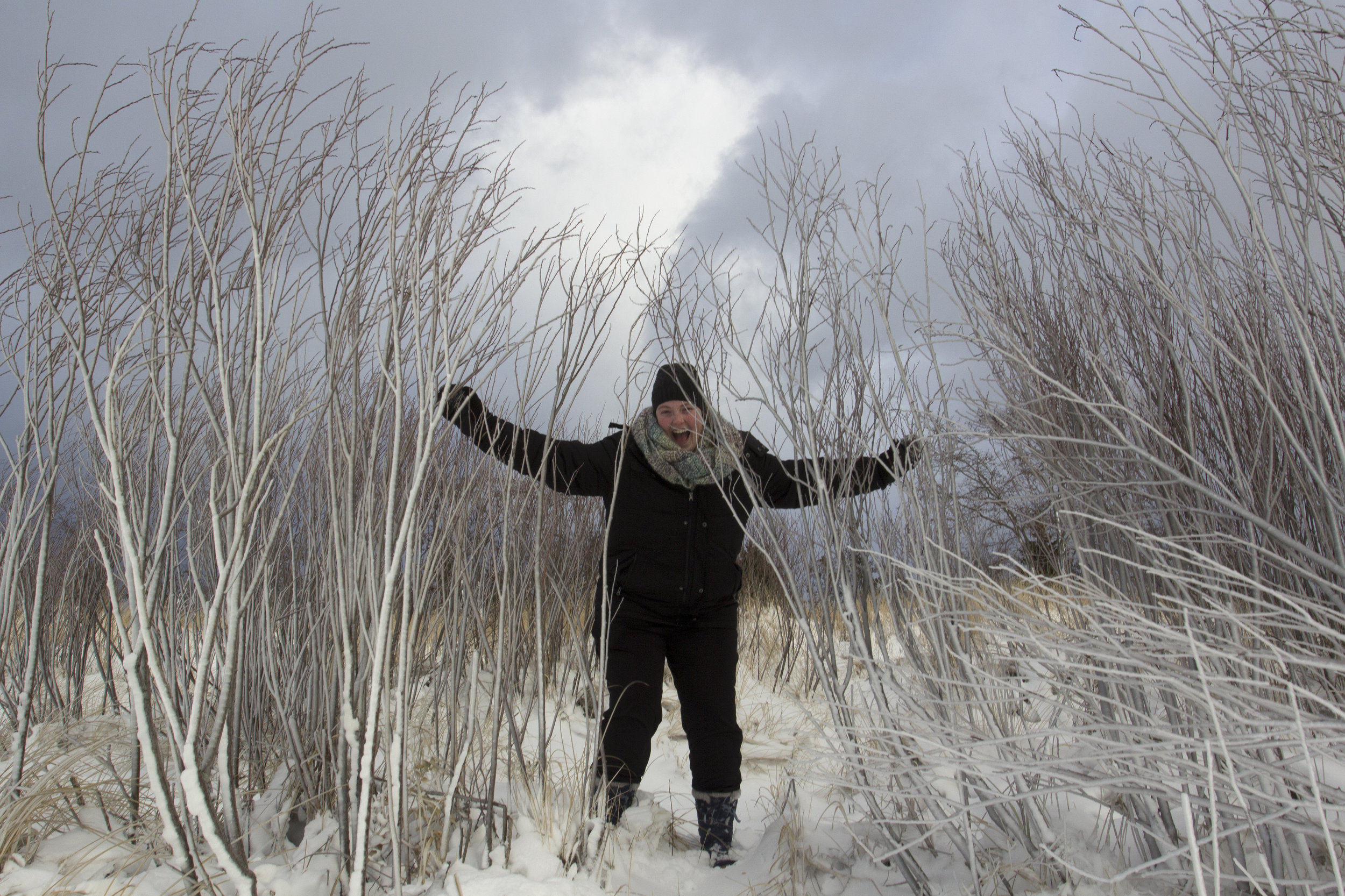 Keegan scrambles through ice covered grasses.