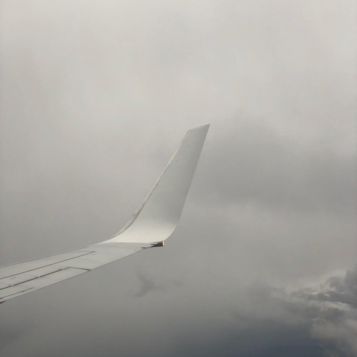 plane-wing-9.jpg