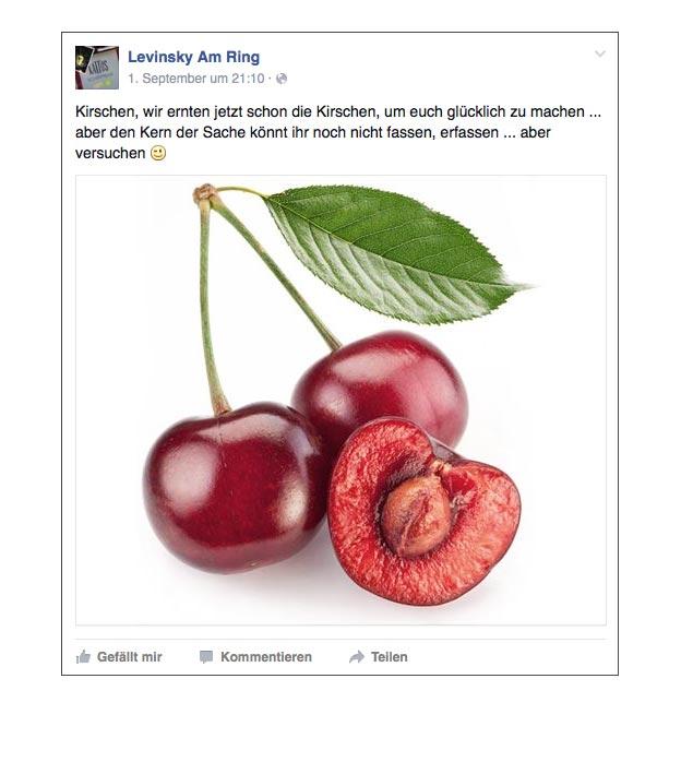 facebook_teaser-kampagne-levinsky-designkitchen-07.jpg