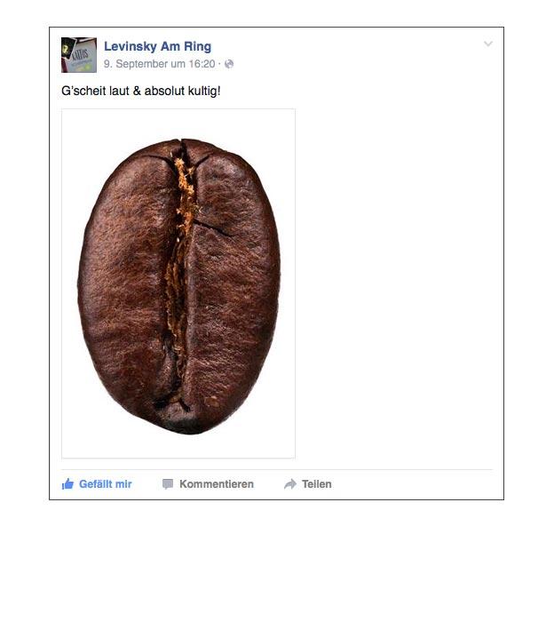 facebook_teaser-kampagne-levinsky-designkitchen-10.jpg