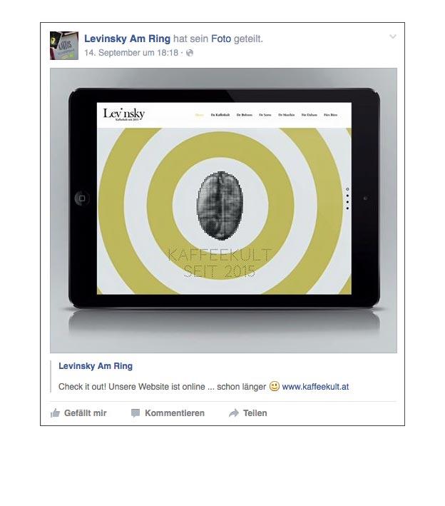 facebook_teaser-kampagne-levinsky-designkitchen-13.jpg