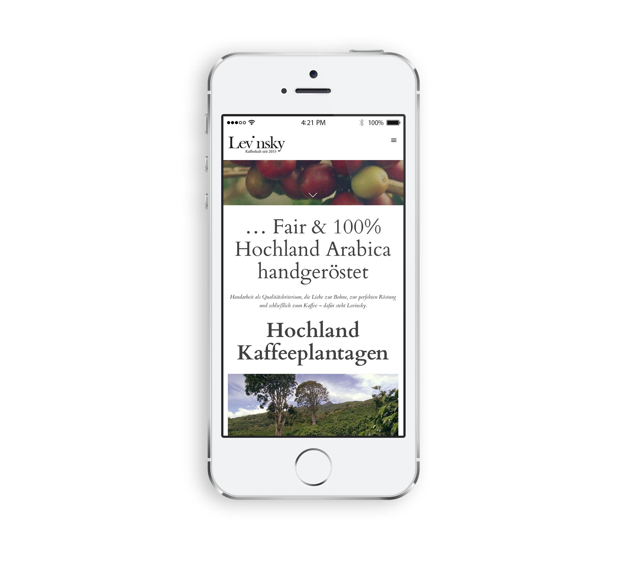 hp-levinsky-designkitchen-iphone2.jpg