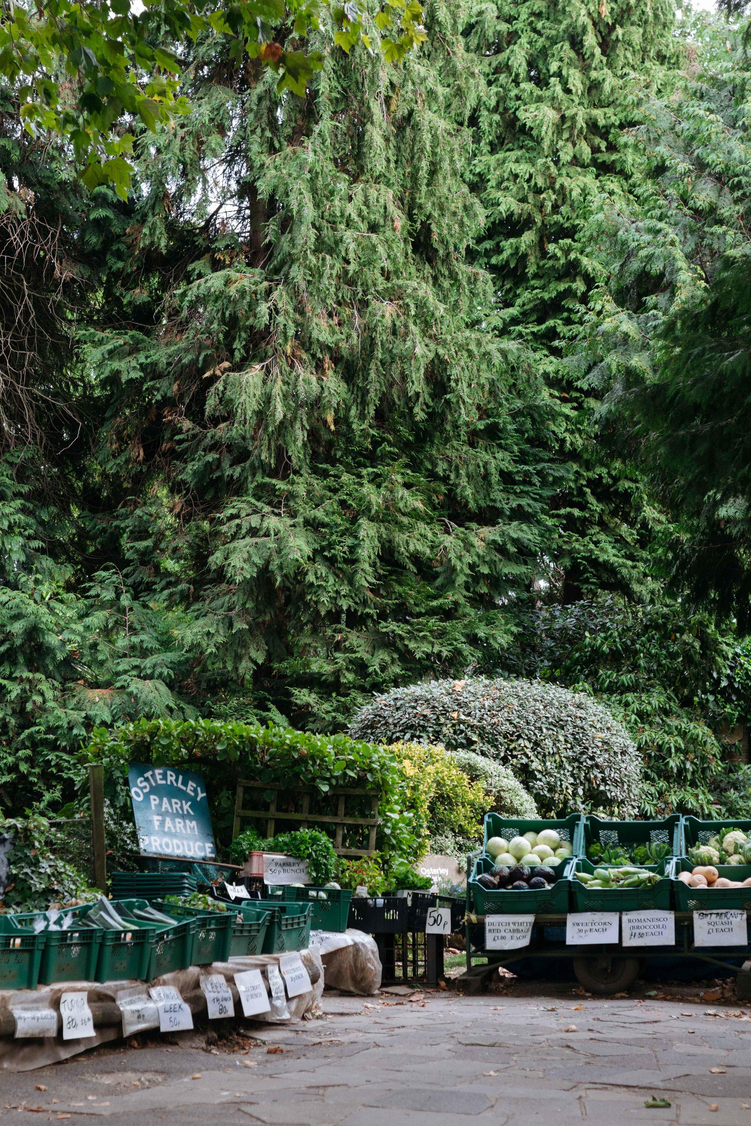 Osterley Park-3.jpg