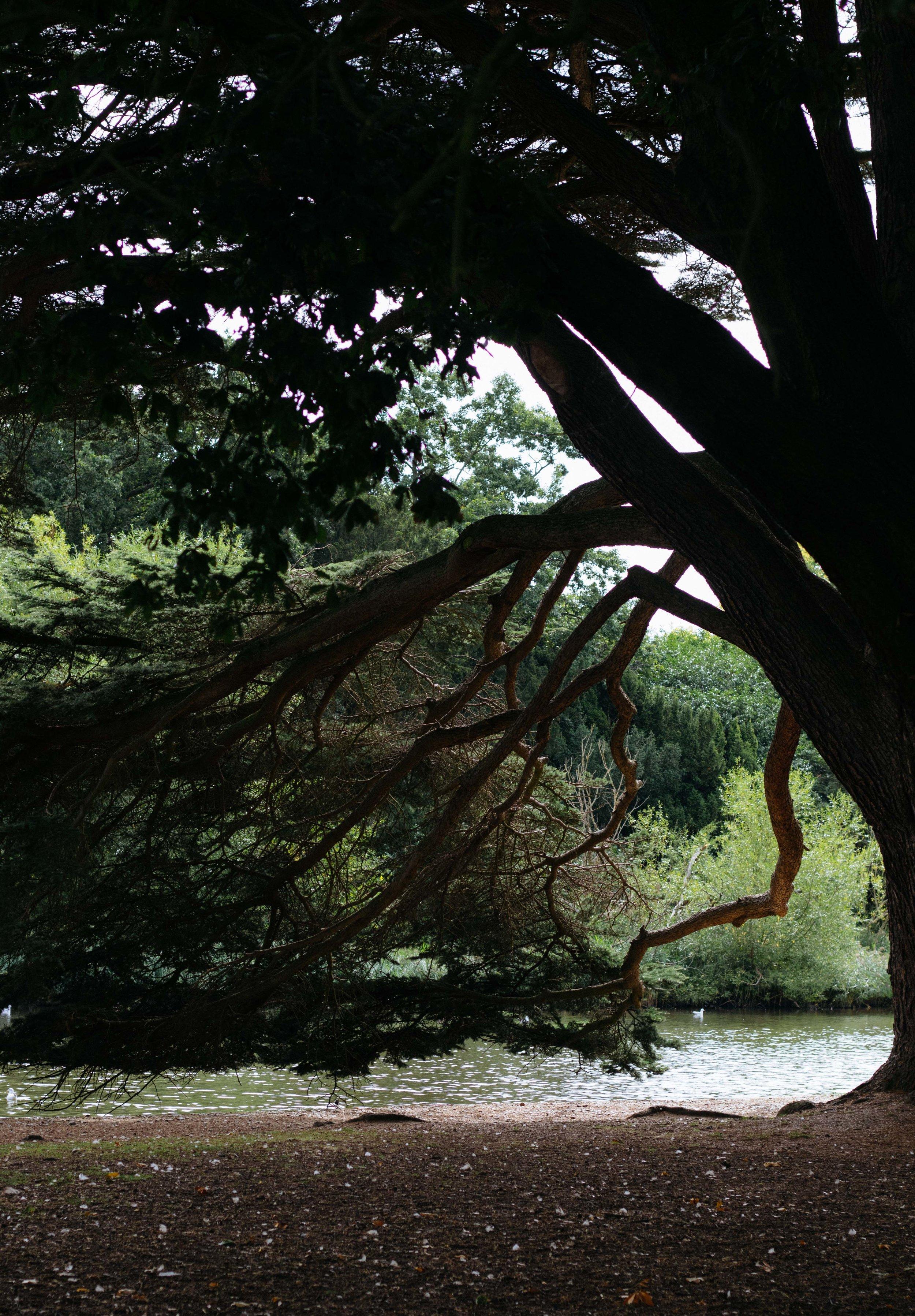 Osterley Park-11.jpg