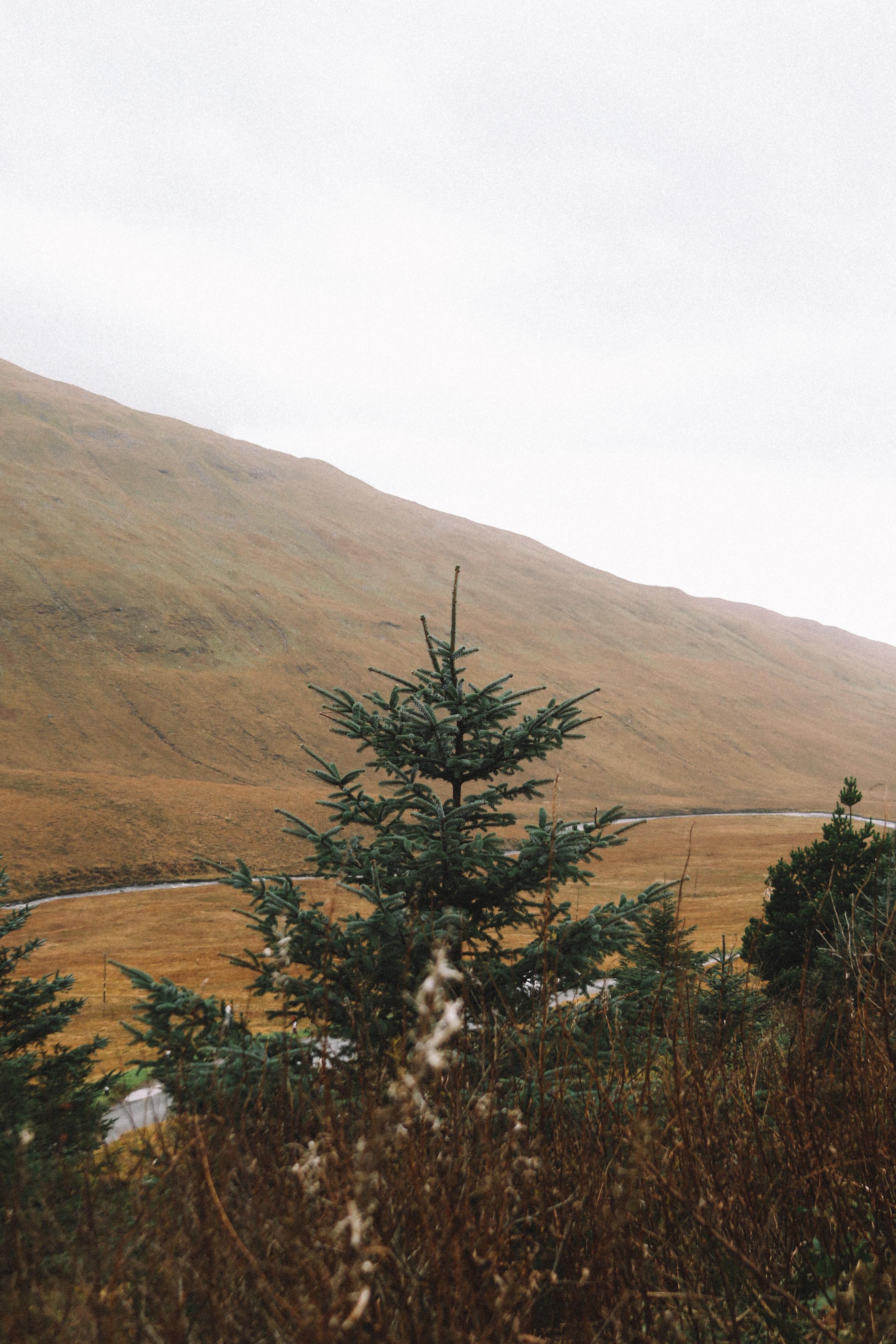 Isle of Skye-17.jpg
