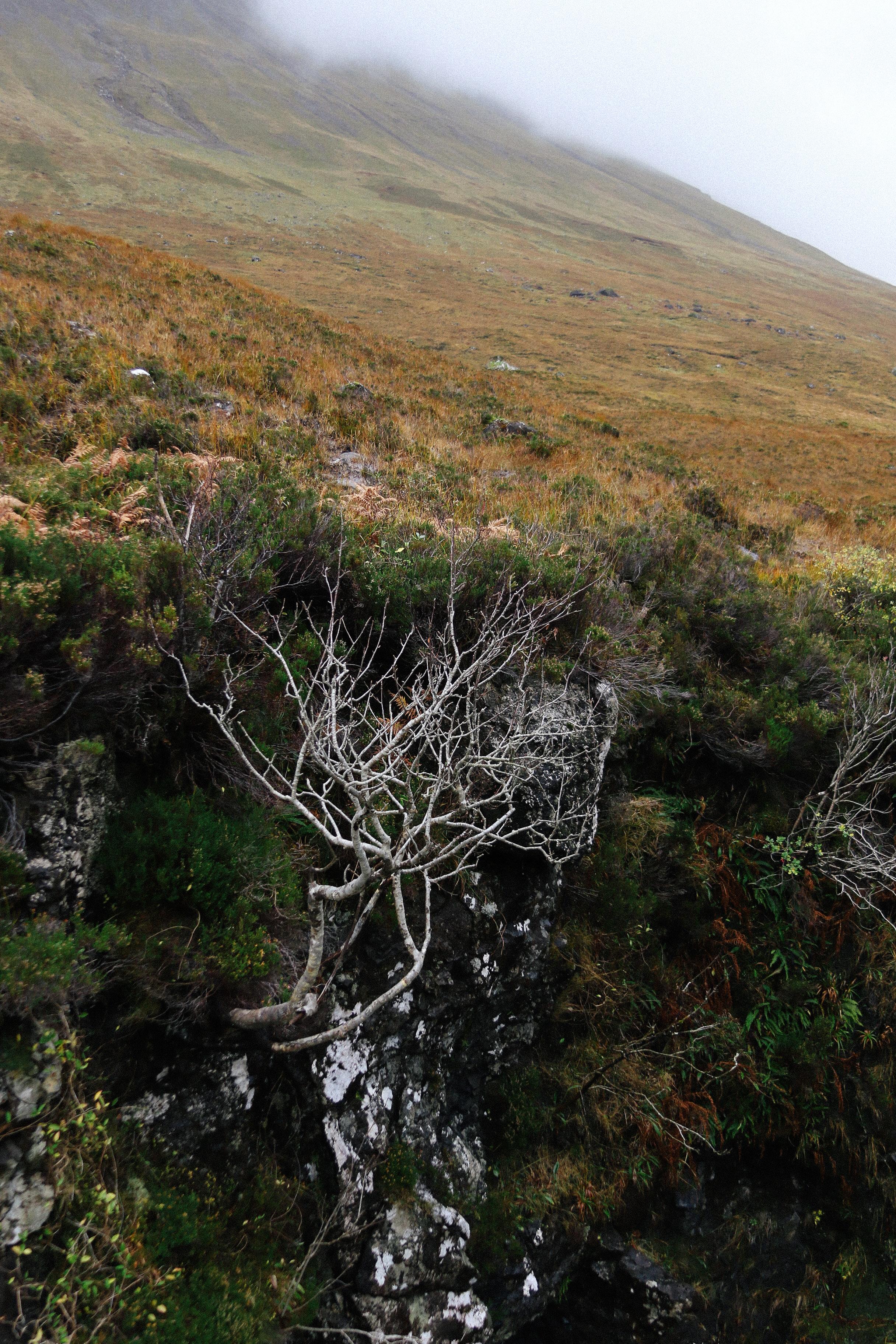 Isle of Skye-28.jpg