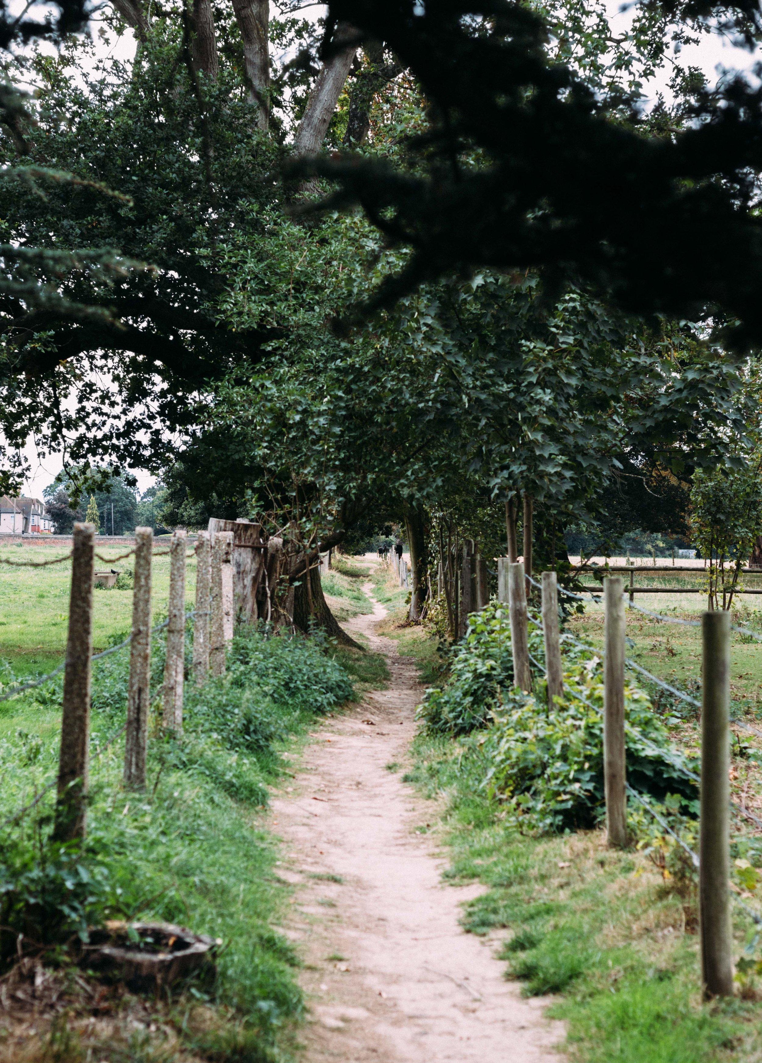 Osterley Park-38.jpg