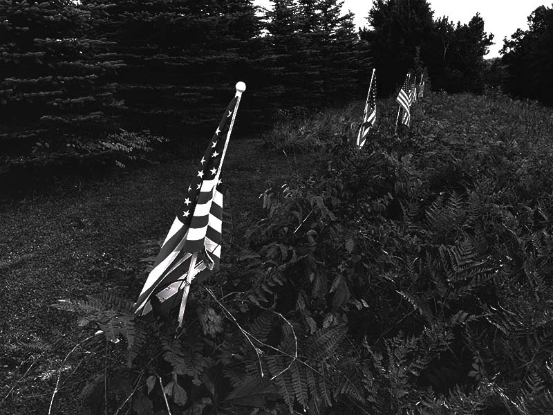 flags2bw.jpg