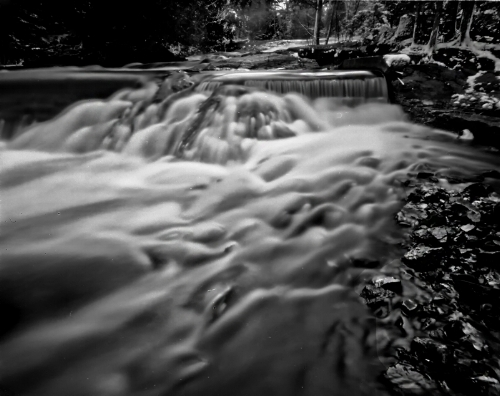 Harman Titan 4x5 Pinhole with Ilford HP5+