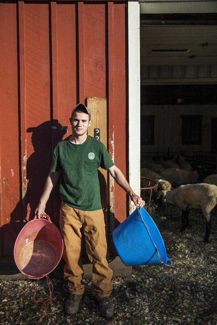 North Star Sheep Farm, ME