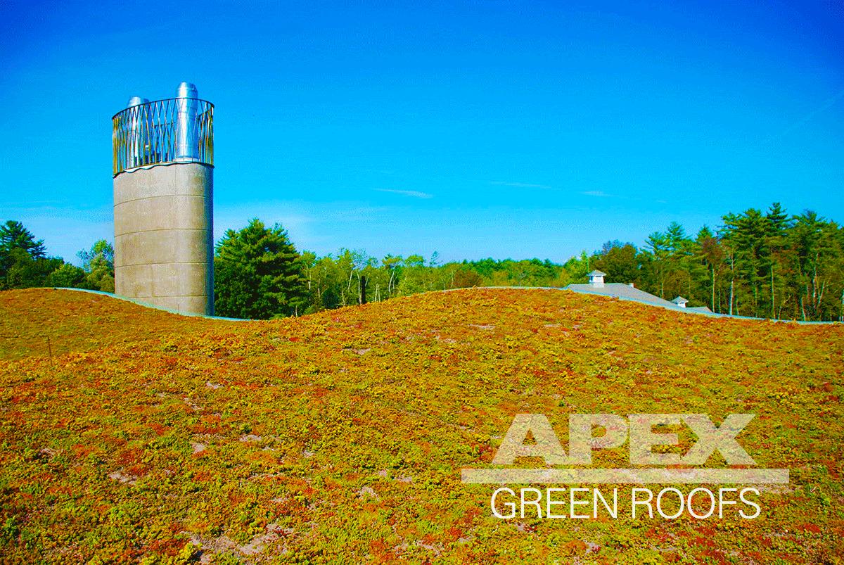 Hotchkiss_School_Biomass_Facility_greenroof.png