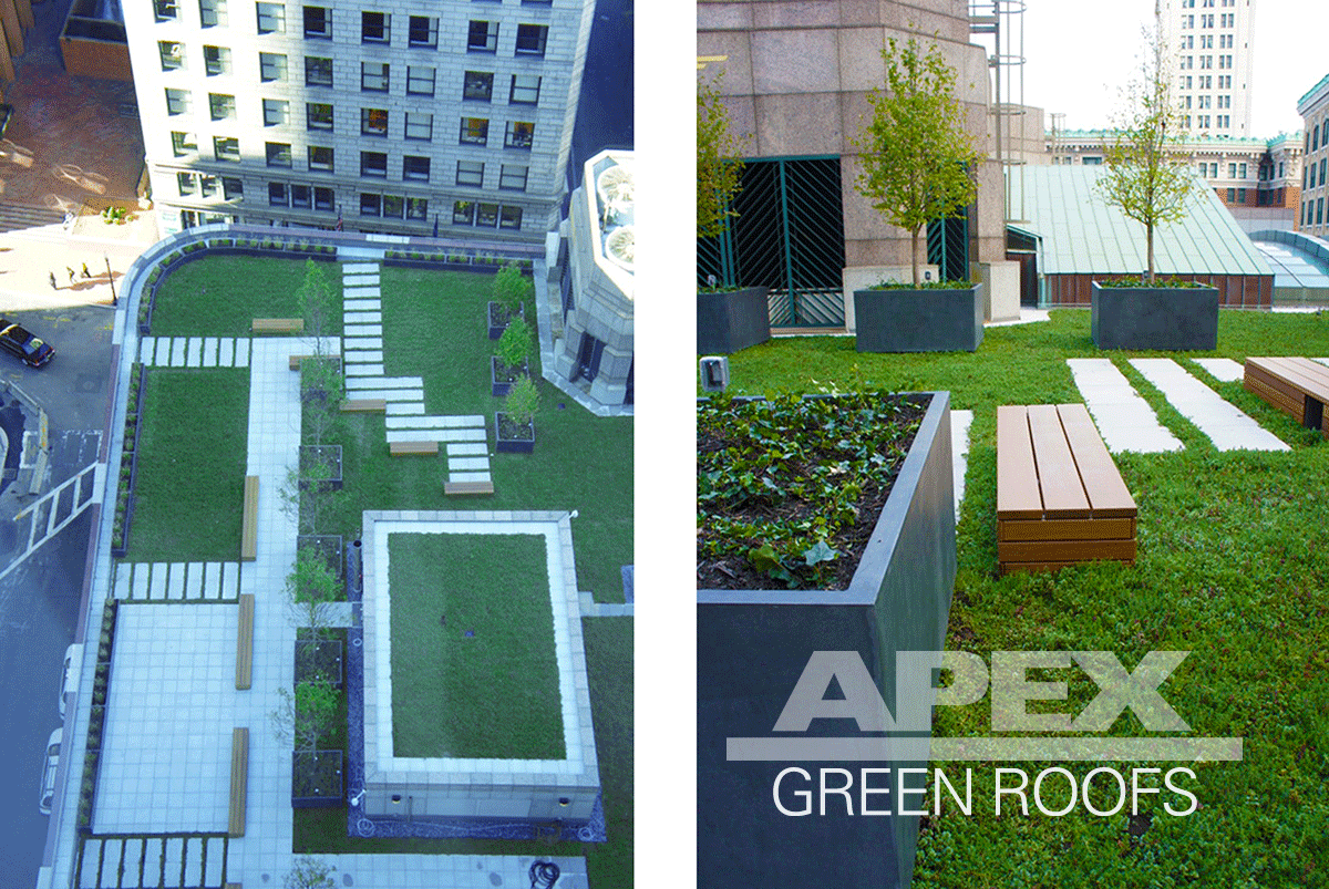 View Commercial Green Roof Projects. Shown: State Street Boston MA