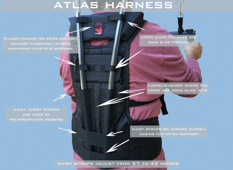 harness back.jpg