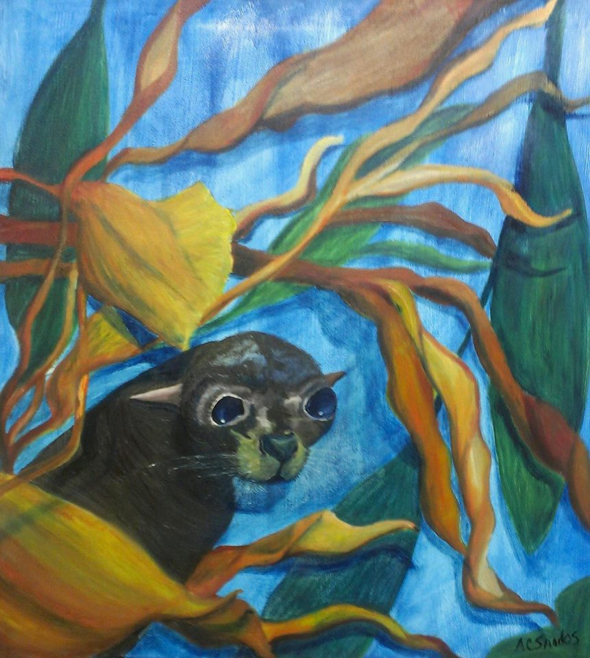 The Kelp Bed