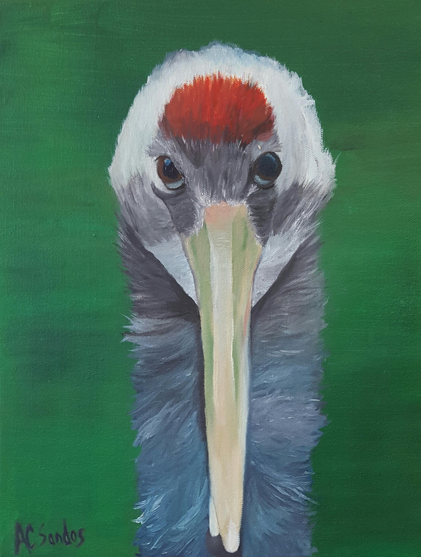 Curious Crane II