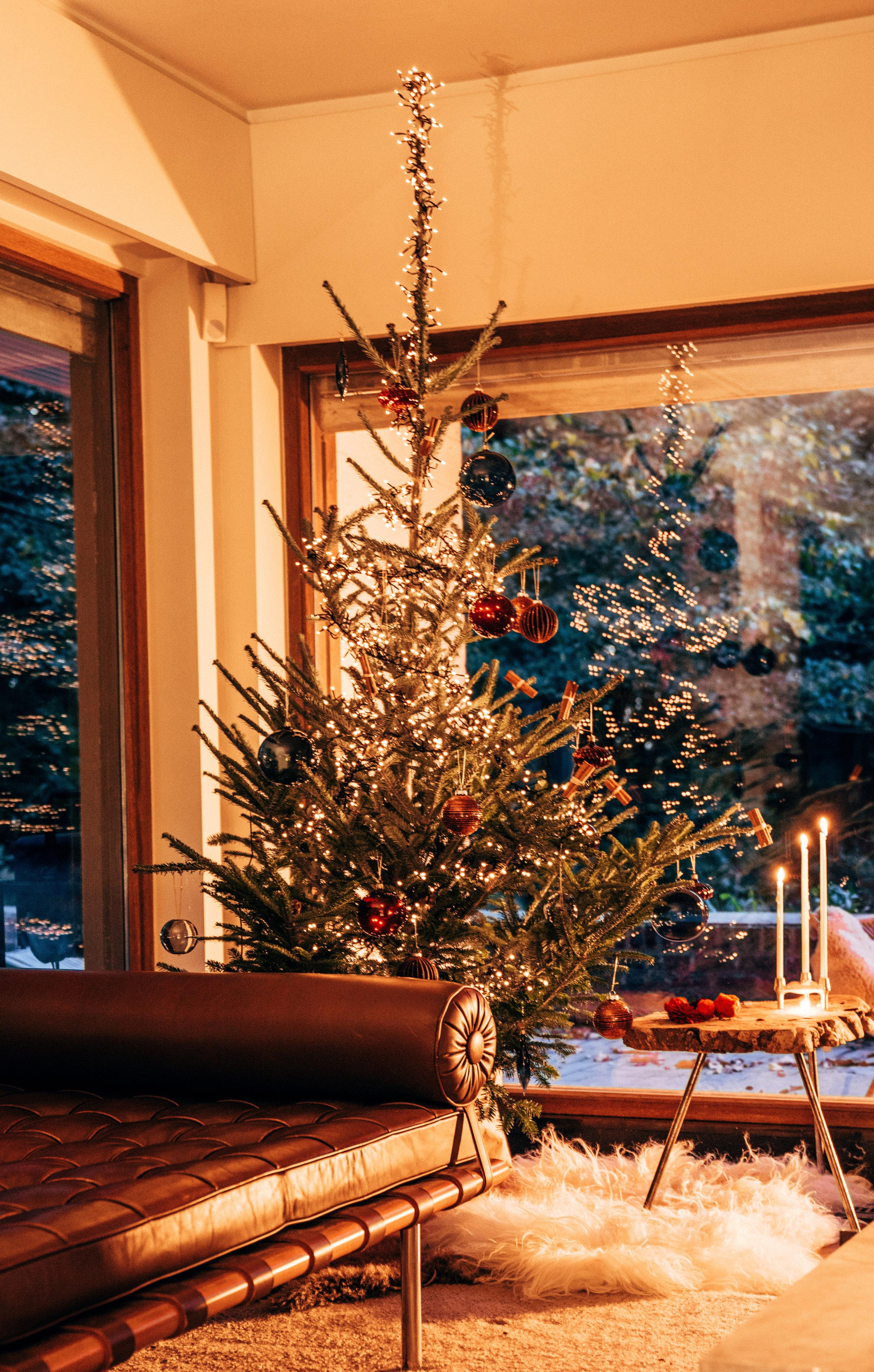 22-10-2017 hooray kerstboom kerst  bos ronse lifestyle-290.jpg