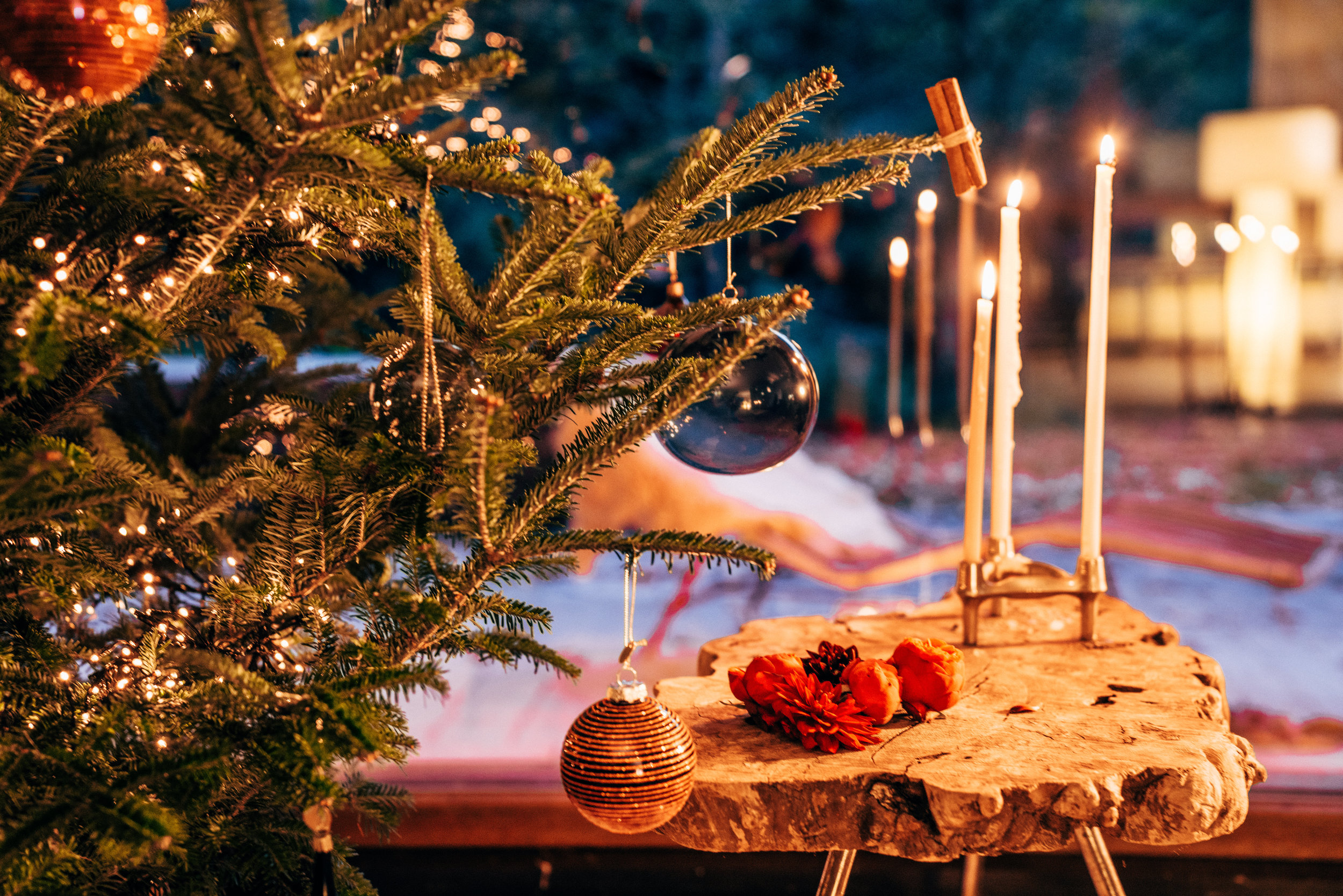 22-10-2017 hooray kerstboom kerst  bos ronse lifestyle-322.jpg