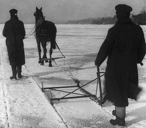 ice-king-horse.jpg