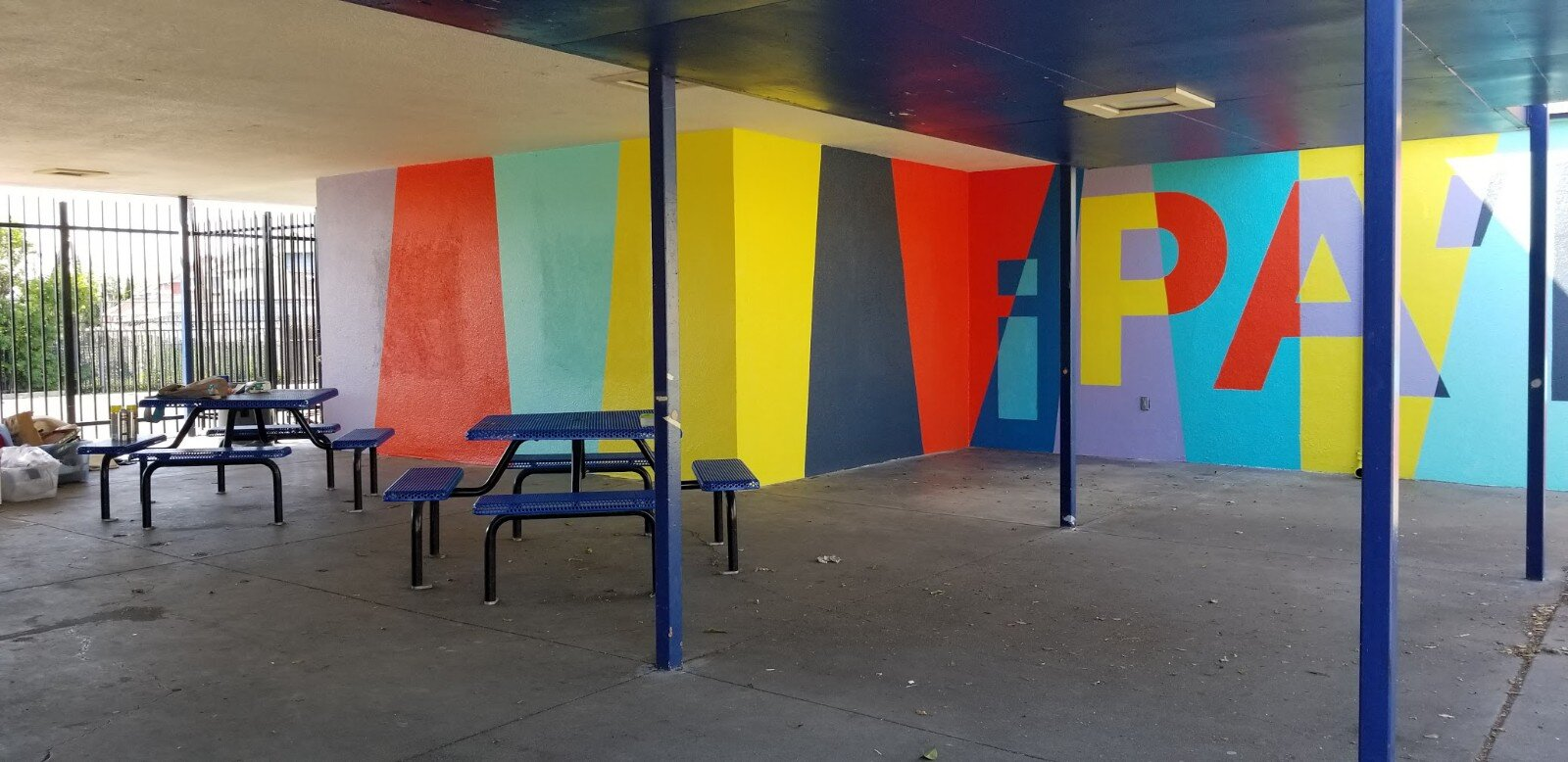 project color corps_madison park academy_final_1.jpg