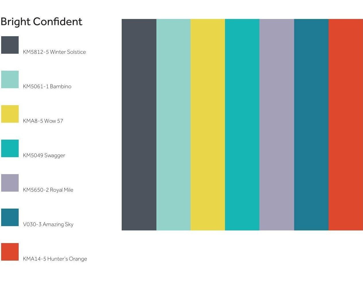 project+color+corps_madison+park+academy_bright+confident+palette.jpg