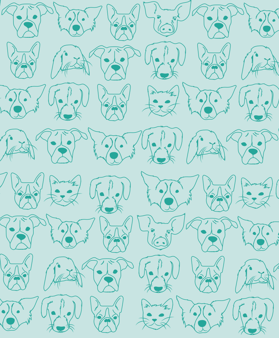 Pattern for The Michigan Humane Society by Lauren Hartley, Garrett Ebbling and Taylor Reyes.