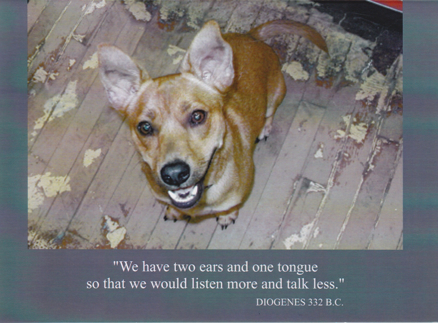 "8    ""We have two ears and one tongue so that we would listen more and talk less.""    (Inside) ""Thanks"""