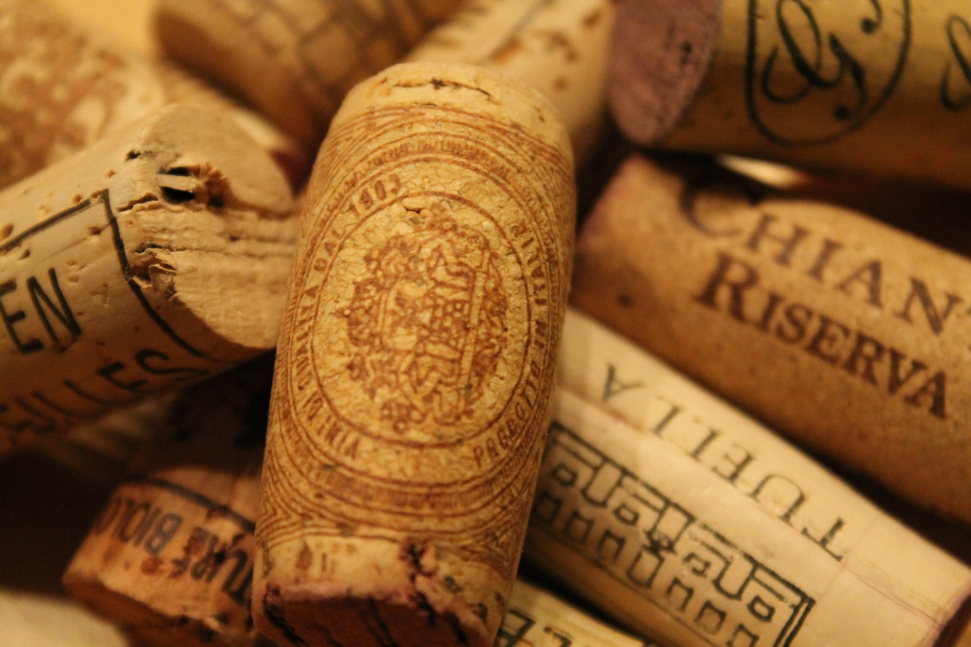 wine-647831_1920.jpg