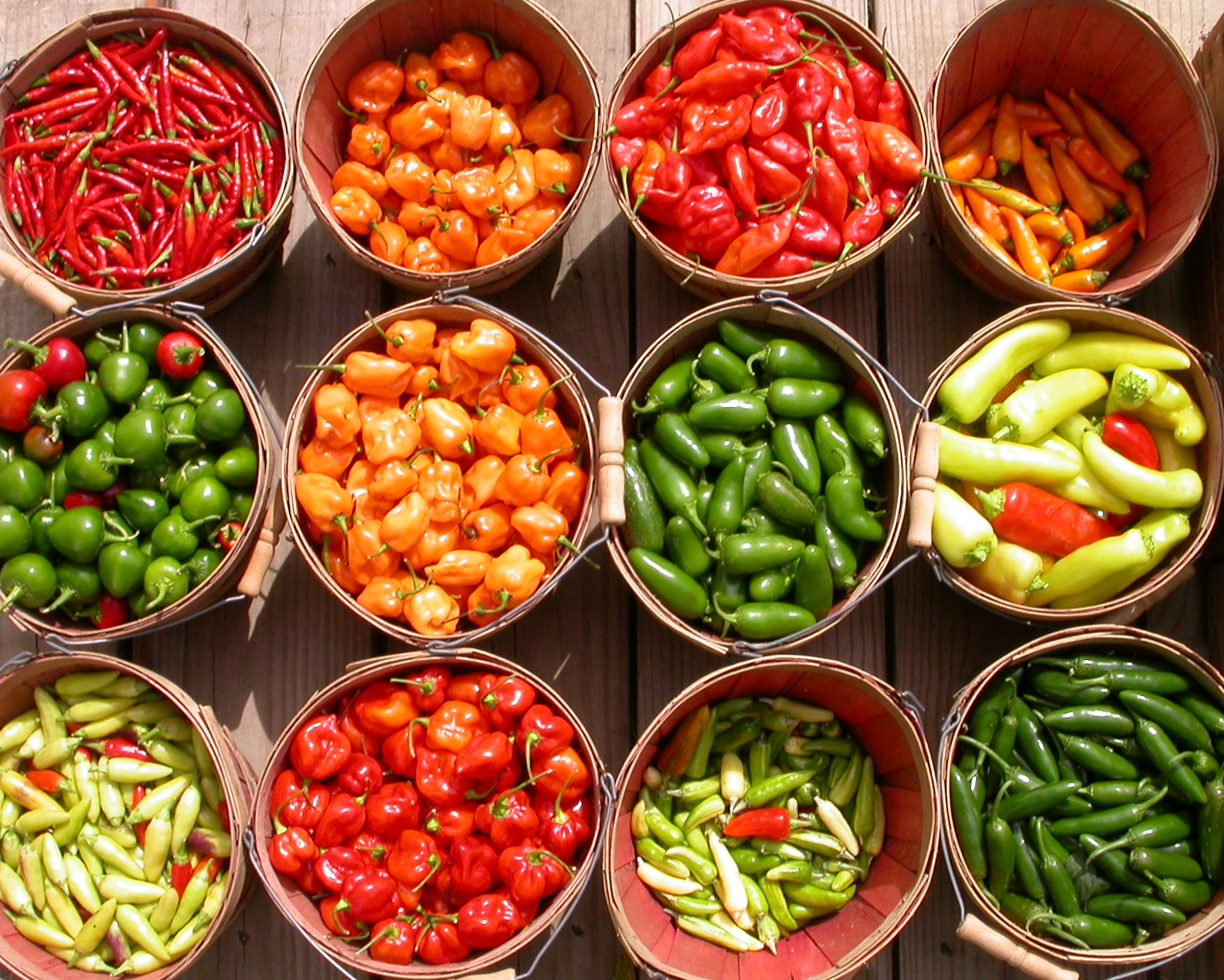 We bring fifteen varieties of hot peppers to the market, from mild Anaheim chiles to blazing hot Habanero!