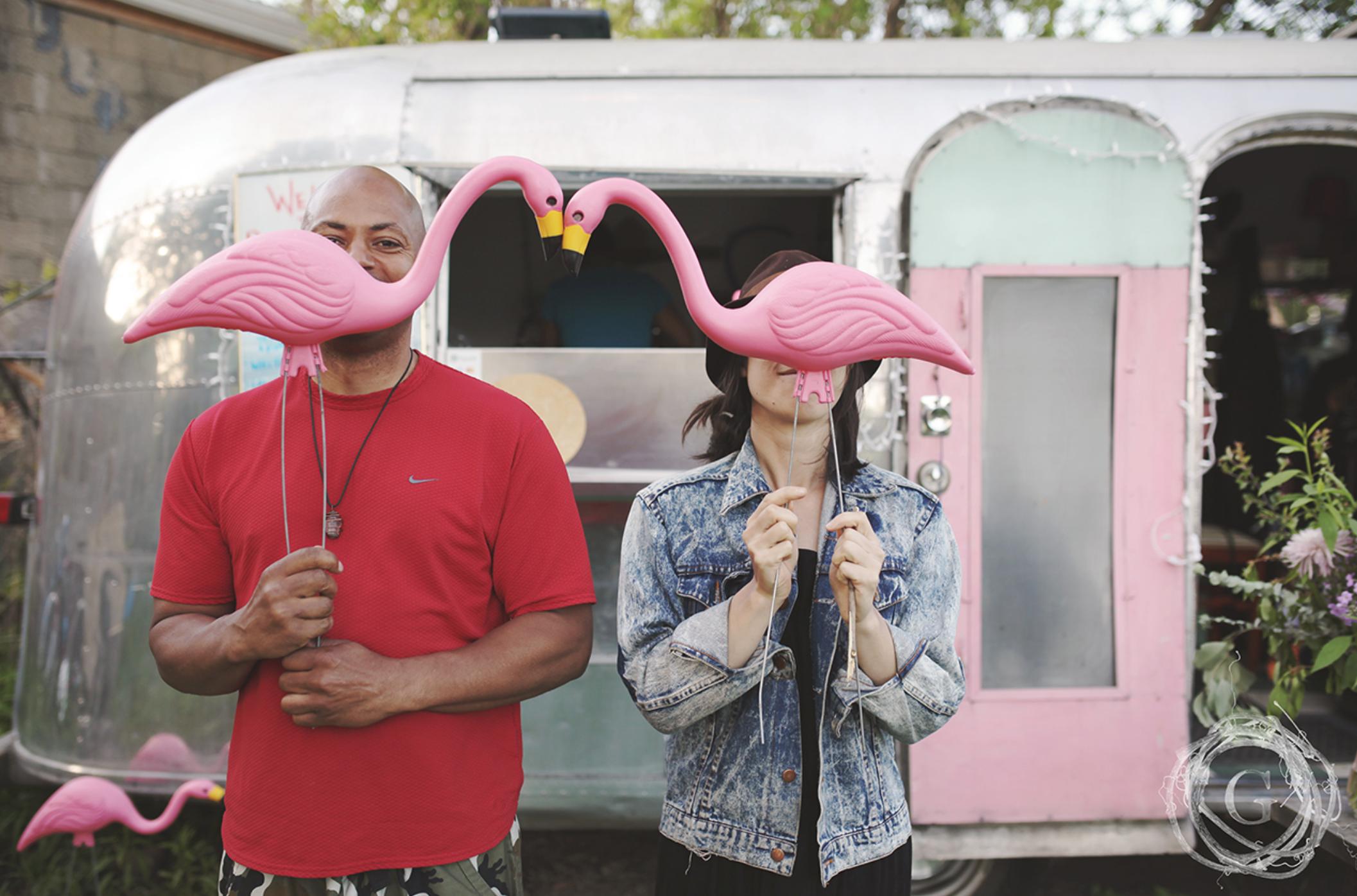 gatherhaus flamingos.png
