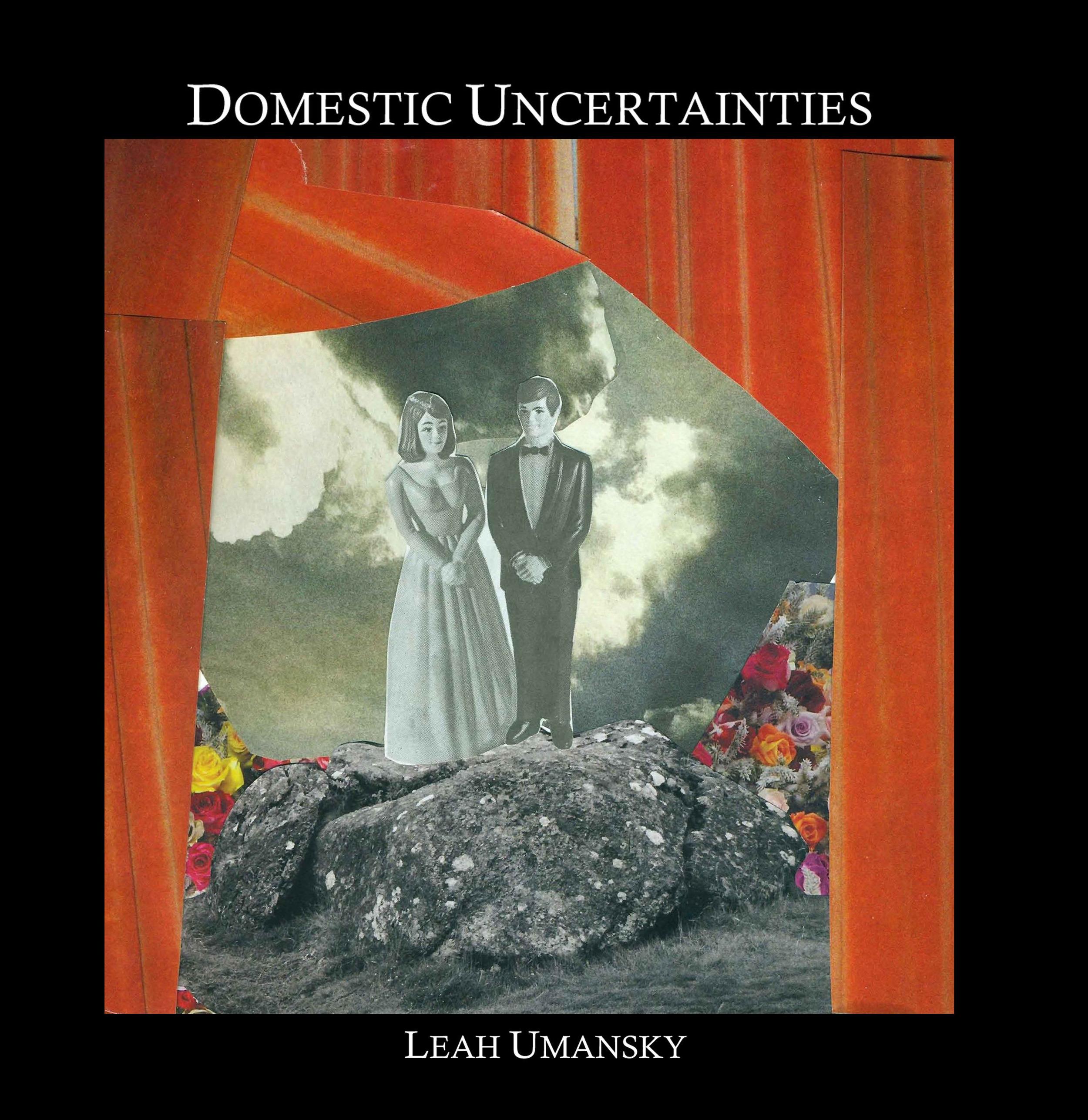 Domestic Uncertainties