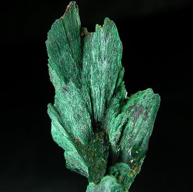 Here's one of my favorites: Malachite!
