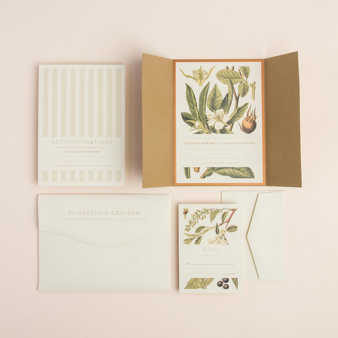 02 Botanical Illustration.jpg