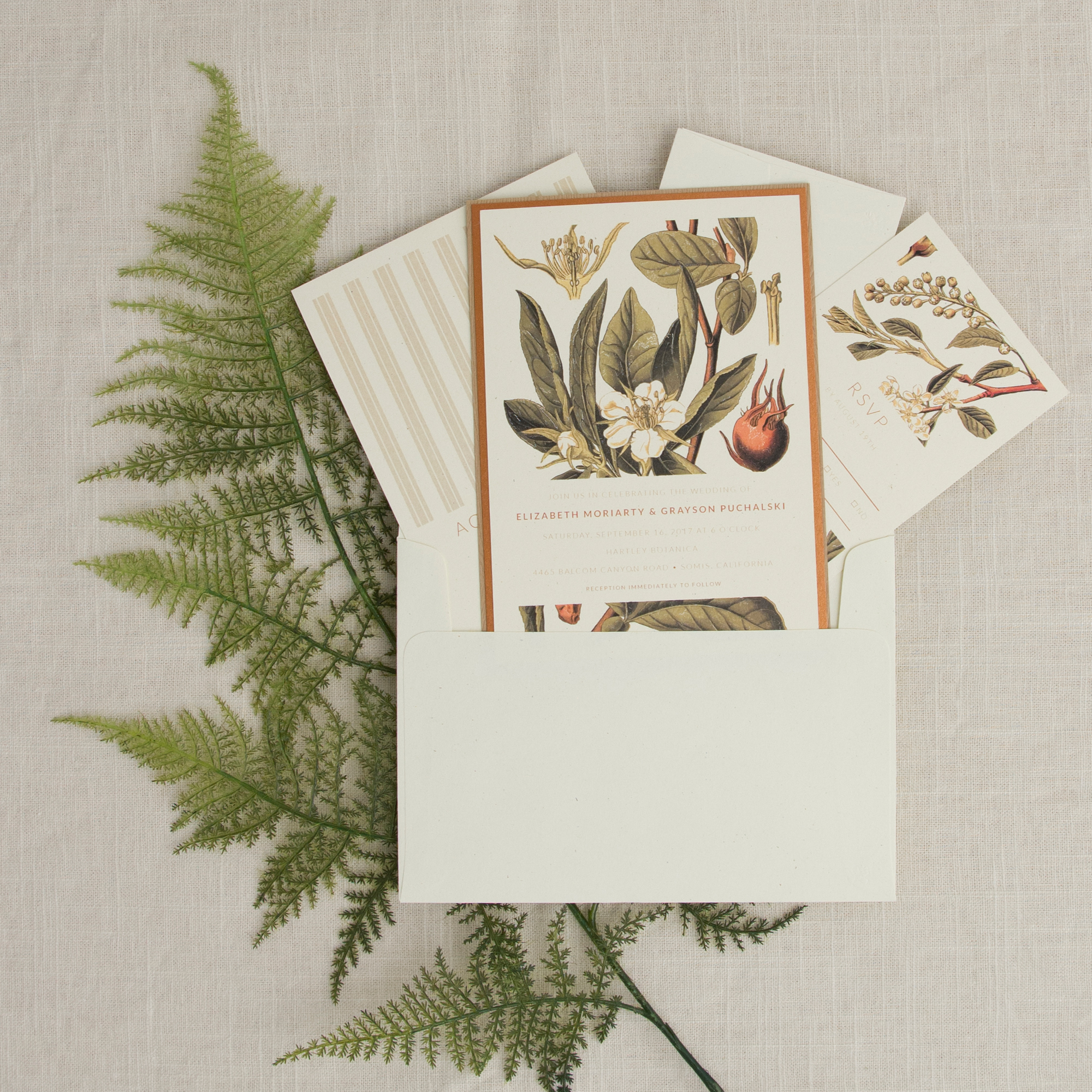 041416 Botanical Illustration.jpg