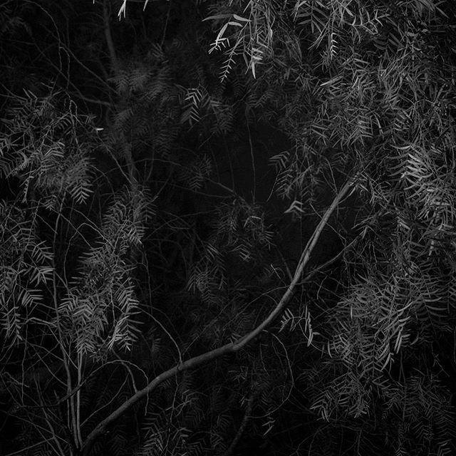 Noite #1  #fineart #blackandwhite #bw #pb #xt20 #fujifilm