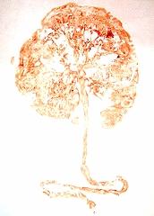 placenta print.jpeg