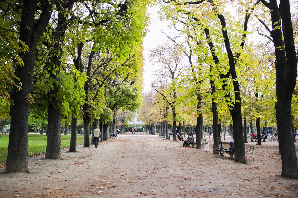 Paris_2014_5_KS1A9889.jpg
