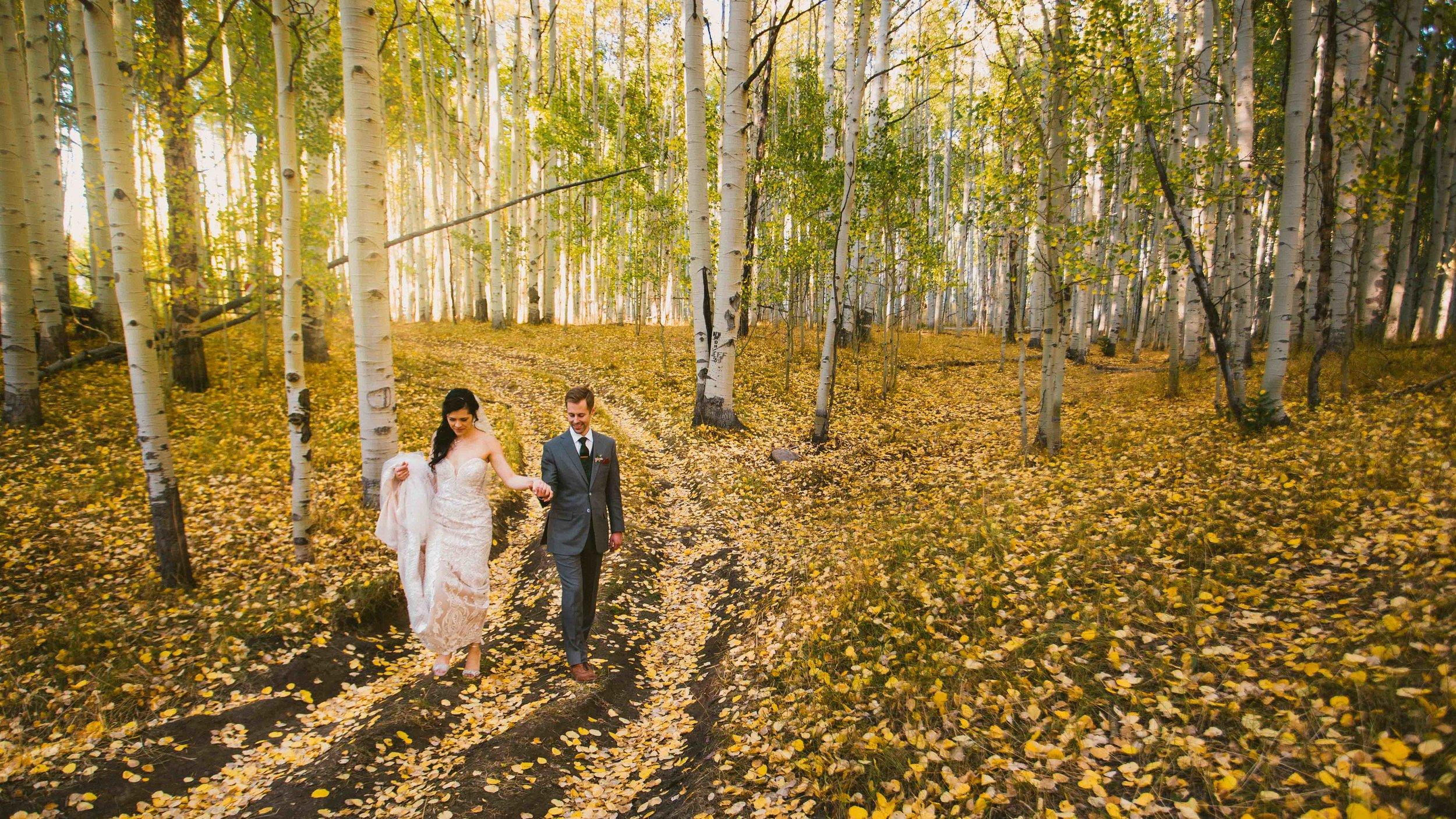 Denver Wedding Photographer-5019.jpg