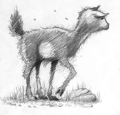 goat01.jpg