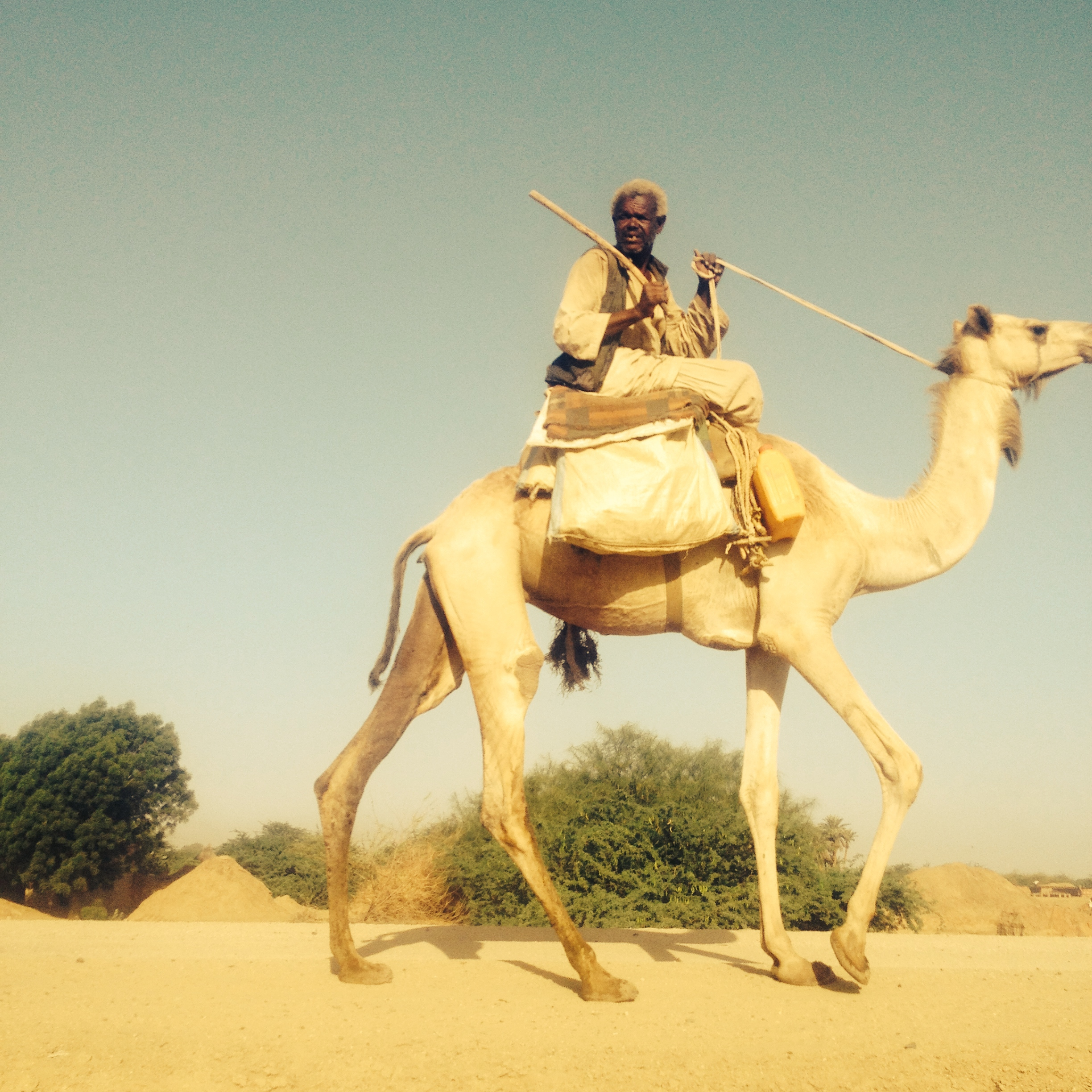 Camel herder, about 1 hour from Kassala