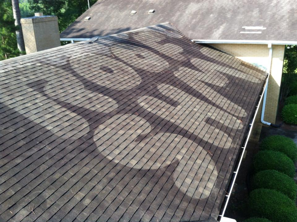 Roof Cleaning In Danville