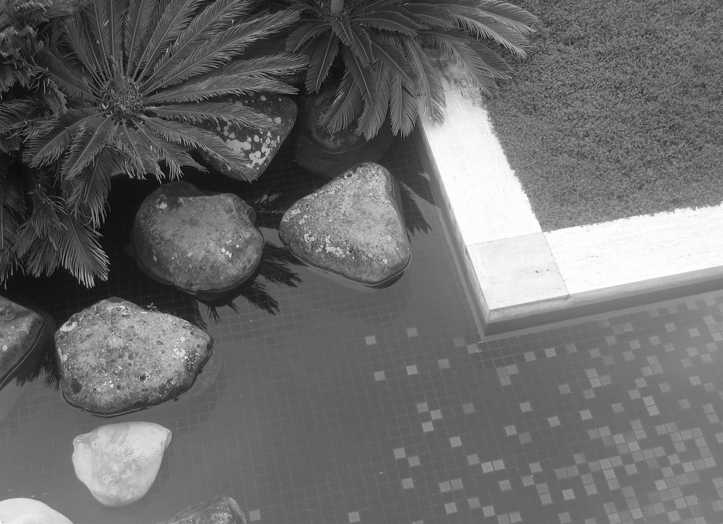 Gibbs Garden Rocks B+W.jpg