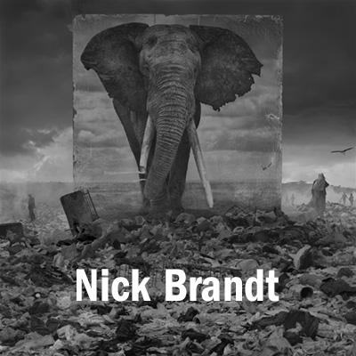 Nick Brandt.jpg