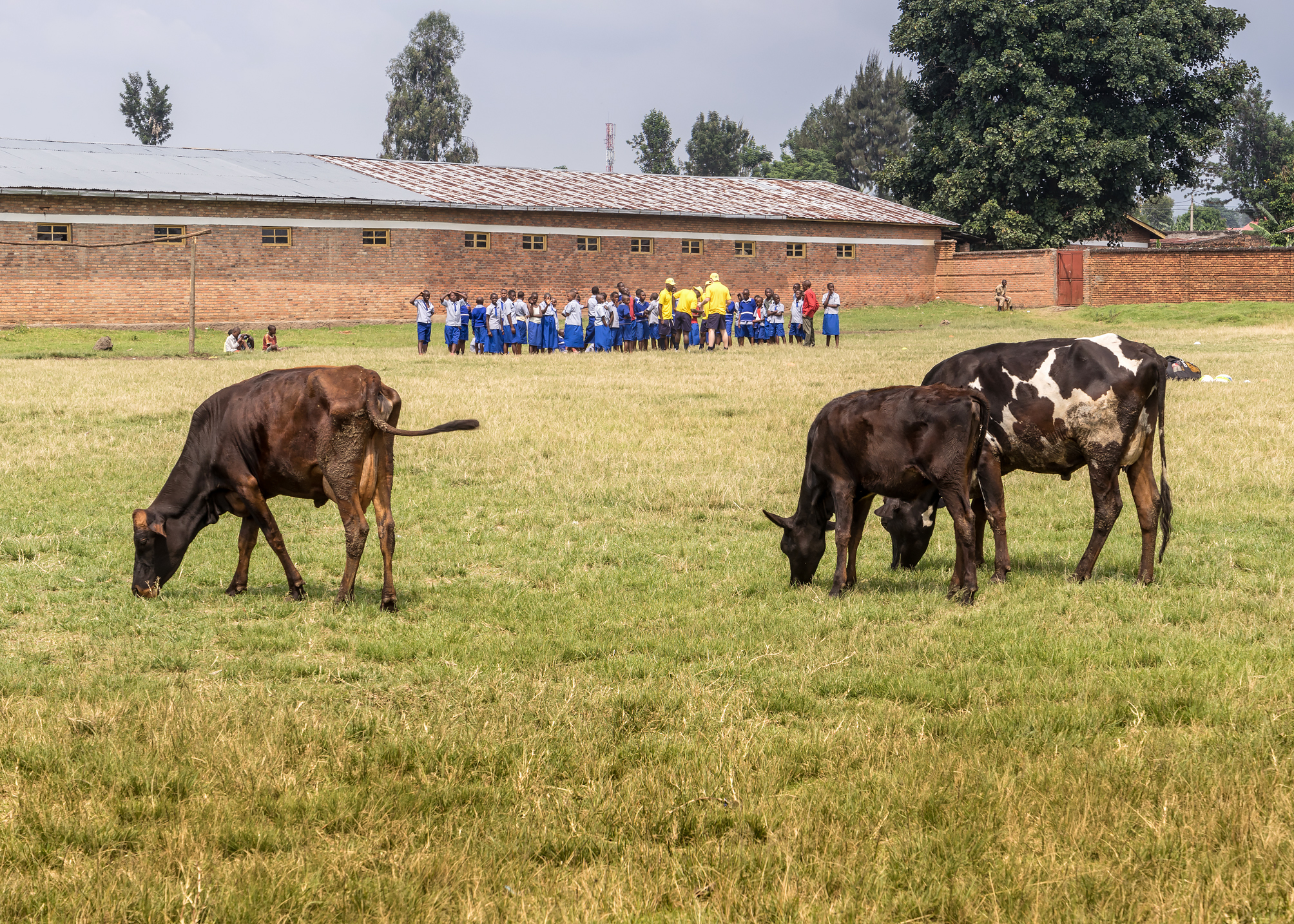 Coaching with Gashangiro School, Ruhengeri