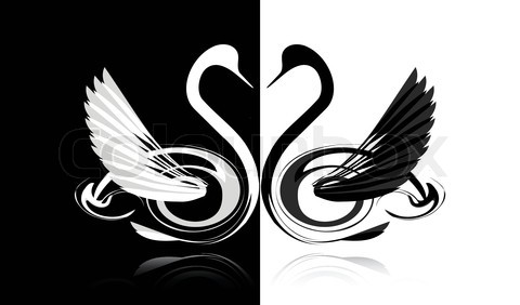 2869740-226765-black-and-white-swans-in-love.jpg