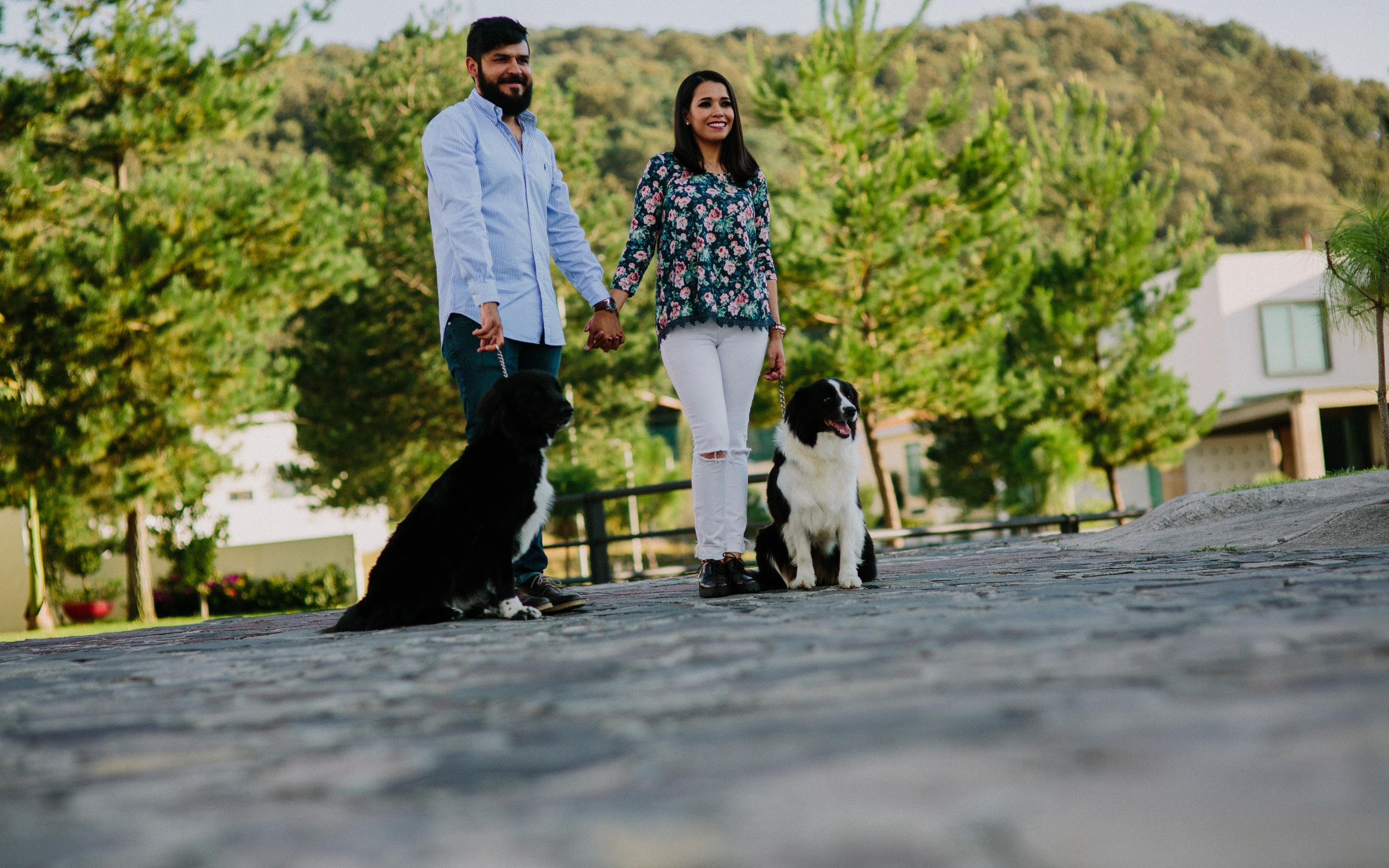 hellosolphoto-savethedate-fotogrfia de boda guadalajara-mascotas1