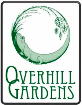 Native Plants Of Overhill Gardens, Monroe County, Tennessee