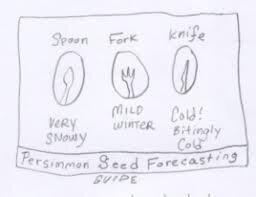 Persimmon forecasting.jpg