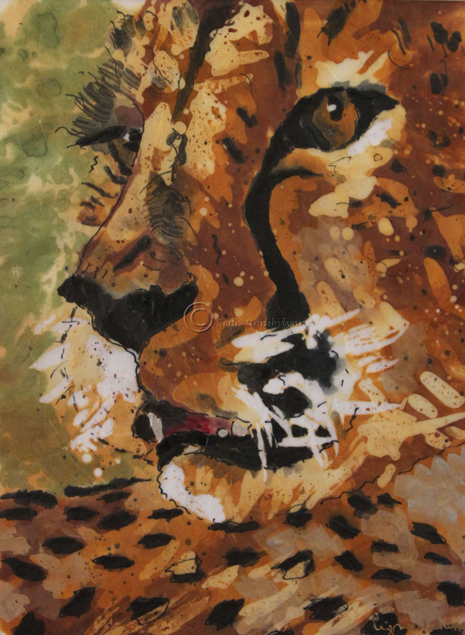 Edwards_Cheetah Profile.JPG