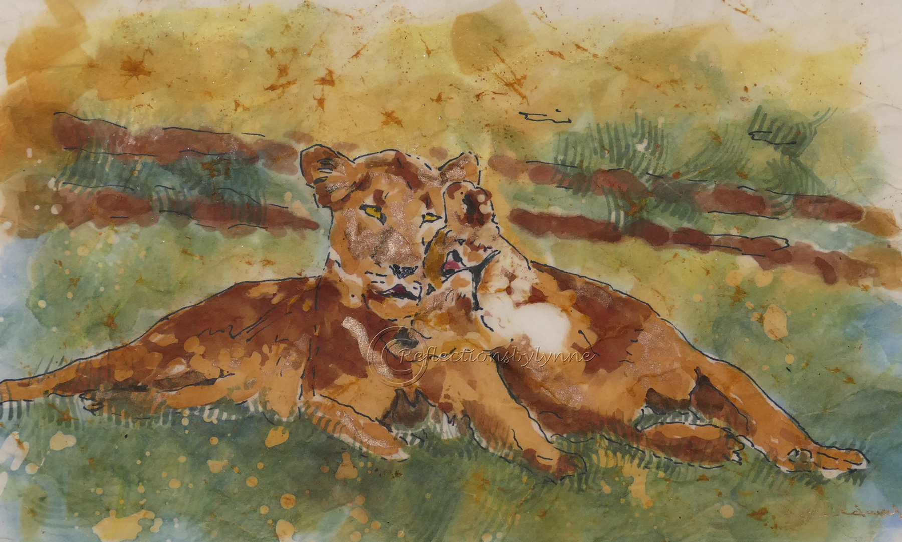 Edwards_Friends Female Lions.jpg